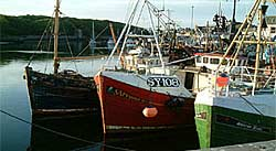 NewValley Cottage - Fishing Boats